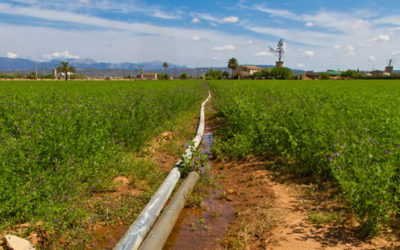 Pipeline Right of Way Protection for Landowners