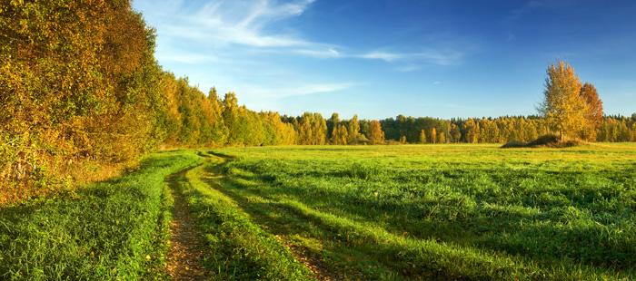 Access Landlocked Property Road