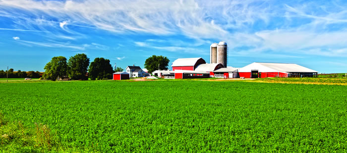 Stepped-Up Basis Considerations in Farm Training Transition Planning