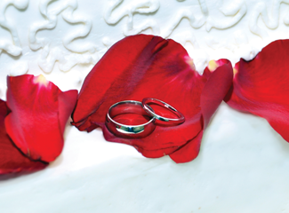 doma-marriage-rings